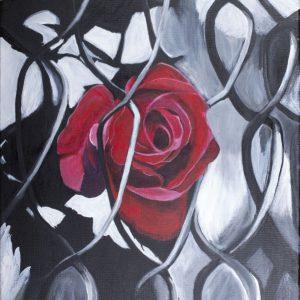 Crimson Rose Through Chainlink Fence